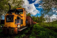 im grnen stehen #2 (A. M. D.) Tags: pictures green canon lost photography foto eisenbahn railway twist places amd grn bild moor sonne spaziergang 700d