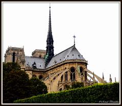 Cathédrale Notre Dame de Paris (Renal Bhalakia) Tags: paris france church architecture europe notredame cathédrale catholicchurch cathédralenotredamedeparis europeanarchitecture nikond600 renalbhalakia nikon28300mmvr