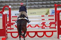 IMG_1975 (dreiwn) Tags: horse horseshow equestrian horseback reiten horseriding showjumping gelnde eventing marbach reitturnier vielseitigkeit reitsport pferdekopf pferdesport springreiten reitplatz gelndestrecke eventingmarbach