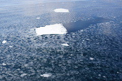 網走の海 03 (tomomega) Tags: 網走 北海道 流氷 海 sea driftice