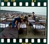 Momentary Kapak çekimi (PinkFloydTurkNet) Tags: momentary lapse reason cover shoot pink floyd stormthorgerson