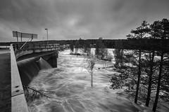 Flood @ Glomma...(Explored, my 137th) (Pewald) Tags: