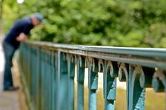 on the fence (RobertsNL) Tags: week24 2013 weekofjune10 52weeksthe2013edition 522013