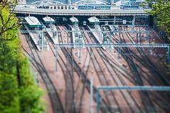 Waverly Station - Edinburgh (m@yphotos) Tags: building art station architecture train nikon edinburgh europa place zug bahnhof type architektur continent gebäude railtracks schottland ort lokomotive schiene waverlystation züge schienen railtrack tiltshift grossbritannien 2011 d90 kontinent bahnhhof blinkagain lokomativen