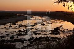 Atardecer Kruguer (jorgemu77) Tags: life park parque sunset wild orange sun sol animals río river southafrica atardecer vida animales naranja backlighting anochecer kruger áfrica salvaje sigma18200 sudáfrica suráfrica eos40d jorgemu77