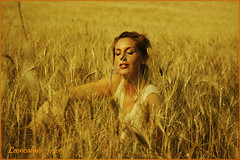 Barbara.......... (leon.calmo) Tags: texture canon barbara toscana colline grano eos50d salinedivolterra highqualityimages bestportraitsaoi leoncalmo