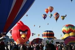 Albuquerque International Balloon Fiesta 2013 (cshubs) Tags: new hot birds balloons mexico air balloon albuquerque angry abq 505