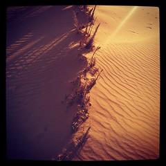 I like desert and its golden sand #desert #sand #sunset #Alkufrah #cyrenaica #libya #ليبيا