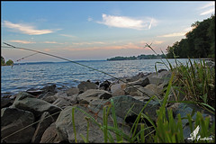 Lake Norman 4 (FirehawkNS) Tags: lake beach nc charlotte lakenorman huntersville manmadelake catawbariver