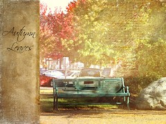The Empty Bench (~~J) Tags: autumn texture leaves bench storyofmylife imagepoetry apoeticfeeling