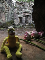Angkor Wat - Swami with lotus flowers