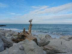 ...rockbalancing... (rebranca46) Tags: nature stones driftwood 1001nights ephemeral adriaticsea equilibrio rockbalancing rebranca 1001nightsmagiccity mygearandme italy2014 portoverdern