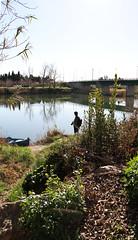 SANT PERE PESCADOR (beagle34) Tags: rio paisaje catalunya 130 riu paisatge empordà baixempordà santperepescador fluvià canon7d