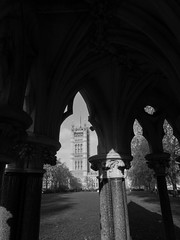Knights of the realm (Le monde d'aujourd'hui) Tags: uk shadow england london heritage history monument westminster stone mystery architecture triangles buildings shadows secret shapes parliament hidden knights masons mysterious historical meaning stonemasons oillars