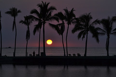 A Bay sunset 2-10-14 (heartinhawaii) Tags: ocean sunset sea palms hawaii pacific silhouettes palmtrees hawaiiansunset bigisland fishpond abay anaehoomalubay hawaiisunset kohalacoast hawaiiisland palmsilhouette kuualiifishpond nikond3100 abayfishpond bigislandfishpond bigislandinfebruary hawaiiinfebruary