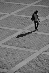 caminhada (Vitor Nisida) Tags: shadow cidade bw paris france rio seine cité frança sombra pb urbana sena rive