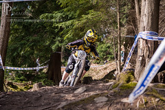 untitled-10.JPG (peter prendergast) Tags: mountainbike sigma 1750 forestofdean competing cycleracing downhillrace eos50d downhillmountainbiking 50150 cyclecompetition nakedracing 661minidownhill