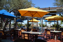 At the Blue Coyote Bar & Grill in Palm Springs California (People, Places & Things) Tags: california palmsprings