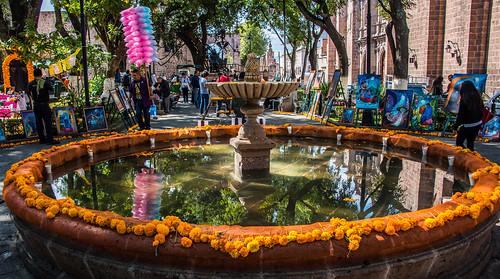 2016 - Mexico - Morelia - El Jardín de las Rosas - 2 of 2