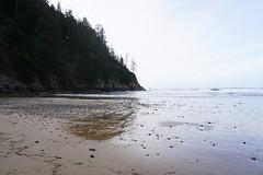Oregon Coast (kimmacpherson) Tags: oregon oregoncoast beach ocean surfing surf rainforest short sands shortsands manzanita oswald oswaldwest oswaldweststatepark sonya6300 sony