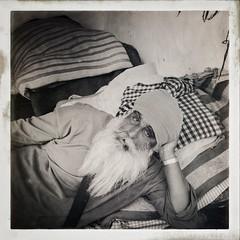 Incredible India series (Nick Kenrick..) Tags: india guru beard sikh pushkar rajasthan hindu portrait