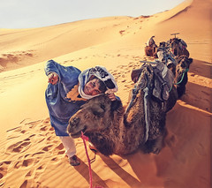 ('J' Jose Maria Perez Nuñez) Tags: mezouga sahara marruecos jmpznz dromedarios desierto