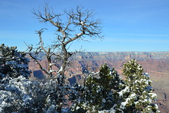 Grand Canyon 41 (Krasivaya Liza) Tags: grandcanyon grand canyon national park canyons nature natural wonder az arizona holiday christmas 2016 snowy winter cliffs cliffside edgeofcliff