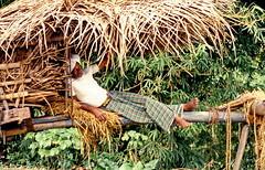Have a short break (gerard eder) Tags: people peopleoftheworld menschen world travel reise viajes asia southasia srilanka rural rurallife landscape landschaft paisajes natur nature