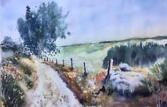 Au flanc de la montagne (Demars Philippe) Tags: demars aquarelle watercolor paysage montagne chemin genets bruyères