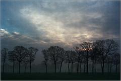 Sonnenaufgang (Ulla M.) Tags: landscape landschaft sonnenaufgang bäume treesrevuenon50mmf14 revueflex analog kleinbild reflectaproscan10t tetenalcolortec selfdeveloped selbstentwickelt freihand umphotoart
