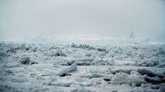 Sureal landscape. (Paul F Nicol) Tags: icepack iceberg sureal alien