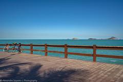 Deck (AlexandreSiqueira) Tags: deck observationdeck leblon riodejaneiro rio rj brasil brazil spring springtime sun sunny sky sunnysky clear sunlight blue green sea ocean atlanticocean atlantic mirante primavera sol ensolarado céu luzdosol azul verde mar oceano oceanoatlântico atlântico
