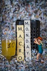 "Macro Mondays : "" Happy 10 Years! "" (www.marnickwijffels.be) Tags: macromondays macro celebration confetti photo party"