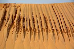 Plumas de arena. (Victoria.....a secas.) Tags: dunadepyla francia dune arena sand