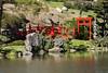 Parc Oriental de Maulévrier, France (Tiphaine Rolland) Tags: parc park parcorientaldemaulévrier maulévrier japonais japanese japanesegarden jardinjaponais jardin garden france にわ 庭 green vert 緑 あかい 赤い red rouge eau water みず 水 pont bridge