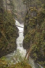 Little Qualicum Falls - Vancouver Island, BC (Freshairphotography) Tags: qualicumriver littlequalicumfallsprovincialpark littlequalicumfalls waterflow waterfalls misty rainforest provincialpark beautifulbc greens mossytrees mossyrocks vancouverisland britishcolumbia
