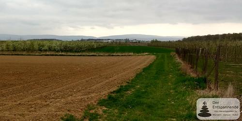 Blick auf Finthen Airfield