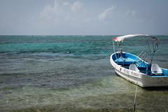 Tulum Casa Cenote blue-4