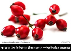 »Prevention is better than cure.« ―Desiderius Erasmus (Nutrients.Work) Tags: curative cure cures deficiency deficient dietetics dietitian doctors healing herbaltea herbs malnutrition medications medicine nutrition nutritionism nutritionist pills prevention remedies remedy rosehip rosehips rosehiptea tea teaparties teatime twig twigs teaparty berry botanic botany branch briar brier bunch bush canina color dog dogrose eglantine food fresh fruit fruits green haw health healthy herb herbal isolated leaf leaves macro medical medicinal natural nature plant raw red rosa rose shrub thorn vitamin vitamins white wholesome wild bulgaria