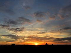 Woolmer Sunset - 19:32 (Marc Sayce) Tags: woolmer ranges forest conford whitehill longmoor south downs national park hampshire sunset sundown trees april spring 2017