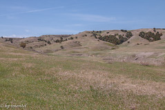 Badlands National Park-8622 (hpimentel2010) Tags: southdakota mountrushmore rapidcity badlandsnationalpark crazyhorse custernationalpark spring2013
