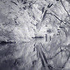 reflective (Jon Downs) Tags: camera trees white lake black tree art water gardens club digital canon garden downs landscape ir photography eos photo jon flickr artist photographer image picture pic photographic photograph infrared mauve duotone stowe buckingham society waterscape 400d jondowns
