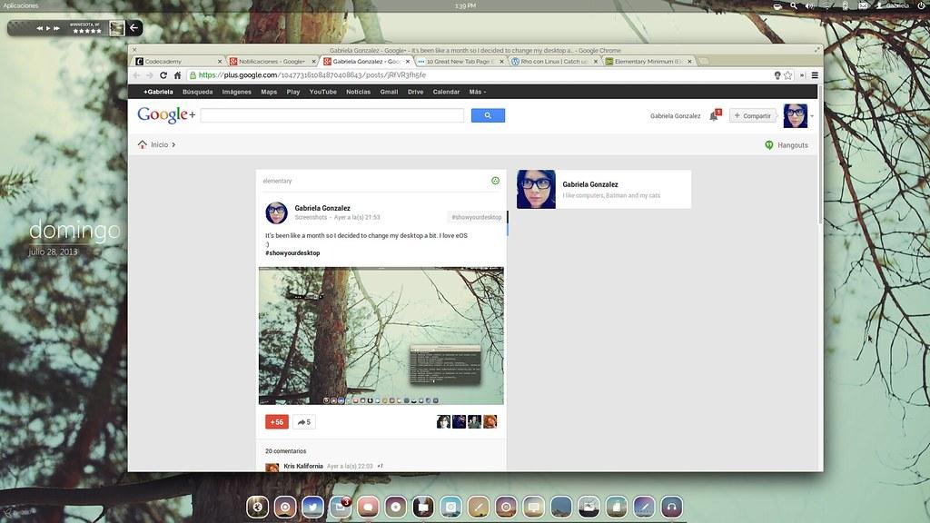Captura de pantalla de 2013-07-28 13:39:31