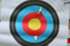 Archery © (Blackcatatheart) Tags: color macro art closeup fun photography hit outdoor hobby bow arrows arrow activity capture miss robinhood active boken fletching biw fletch boe atheletic arrw