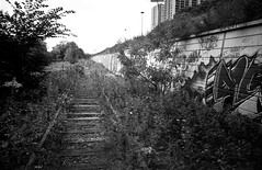 Old Railway in the Don Valley (John G Meadows) Tags: toronto diafine nikonf3 donvalley adoxcms20