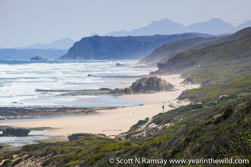 Goukamma Nature Reserve - South Africa