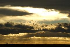 November afternoon. (artanglerPD) Tags: november sky sunlight clouds atmosphere