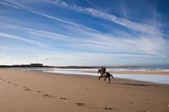 SMV Doonbeg Christmas-4.jpg (seanmurray0) Tags: ireland clare westcoast horseriding irl coclare doonbeg doonbegresort doughmorebeach doonbeglodge
