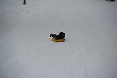 Olsen sledding with the inner tube 2 (Aggiewelshes) Tags: winter snow december sledding innertube olsen oldmainhill 2013