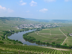 Moselblick (♥ Annieta  pause) Tags: holiday canon river germany landscape deutschland vakantie urlaub powershot mei allemagne vacance allrightsreserved duitsland mosel landschap moselle rivier naturesfinest trittenheim moezel 2013 annieta anawesomeshot usingthisphotowithoutmypermissionisillegal mygearandme sx30is
